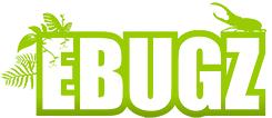 EBUGZ Logo